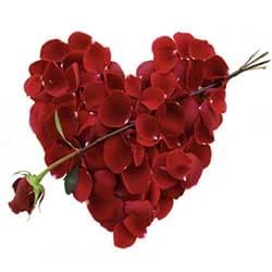 Alla Hjärtans Dag Erbjudanden