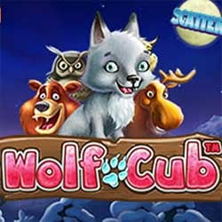 Vinn 50 000 kr på Wolf Cub hos betsson
