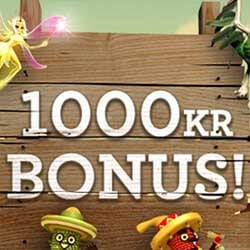Fredagsboost i casinot 100% upp till 1000 kr!