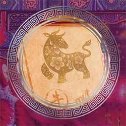 Casino Oxens Cashdrop