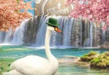 Lillördagens hetaste Casino erbjudande